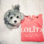 Das L steht für Lolita.
