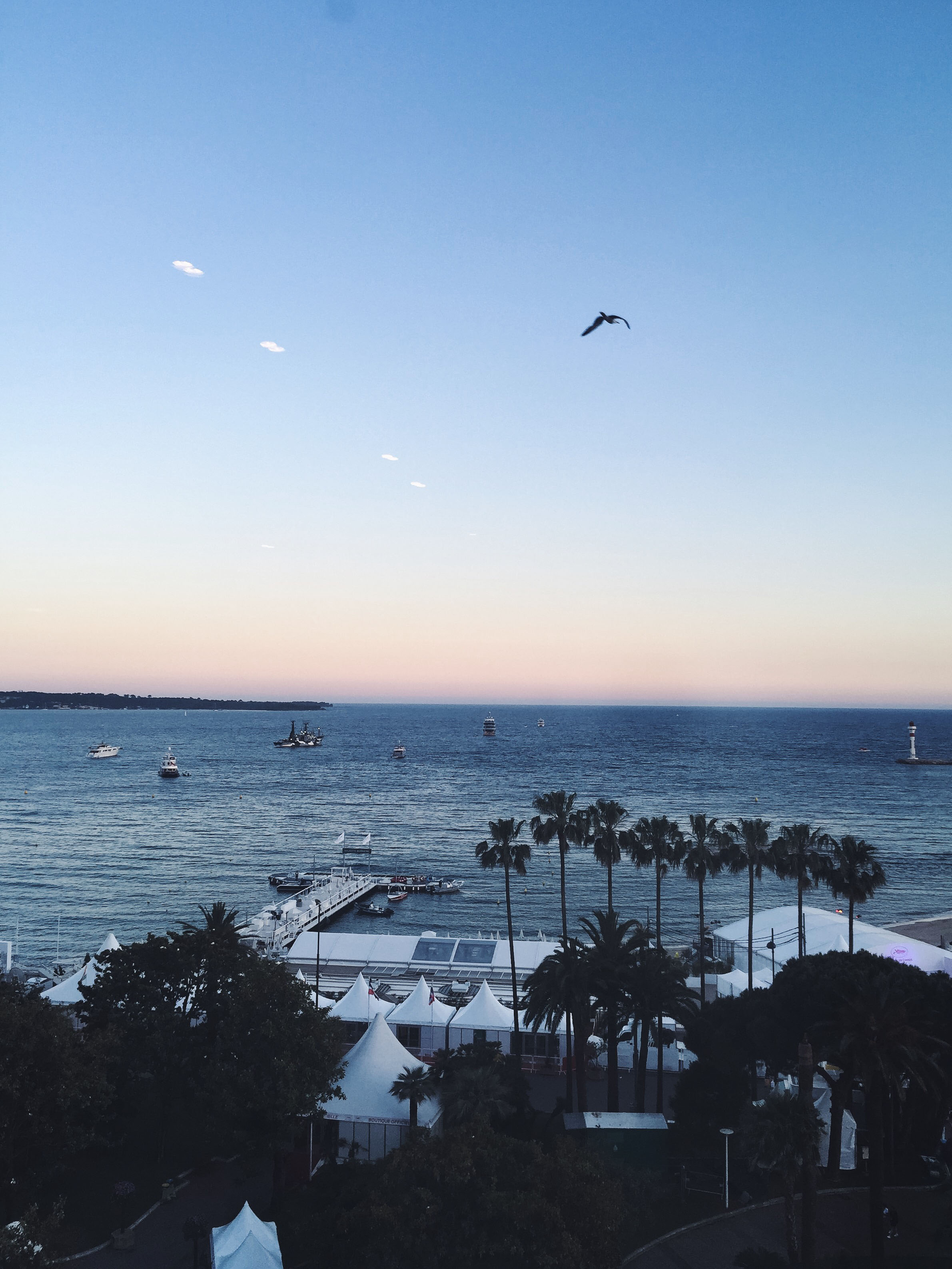 Cannes Photo Diary