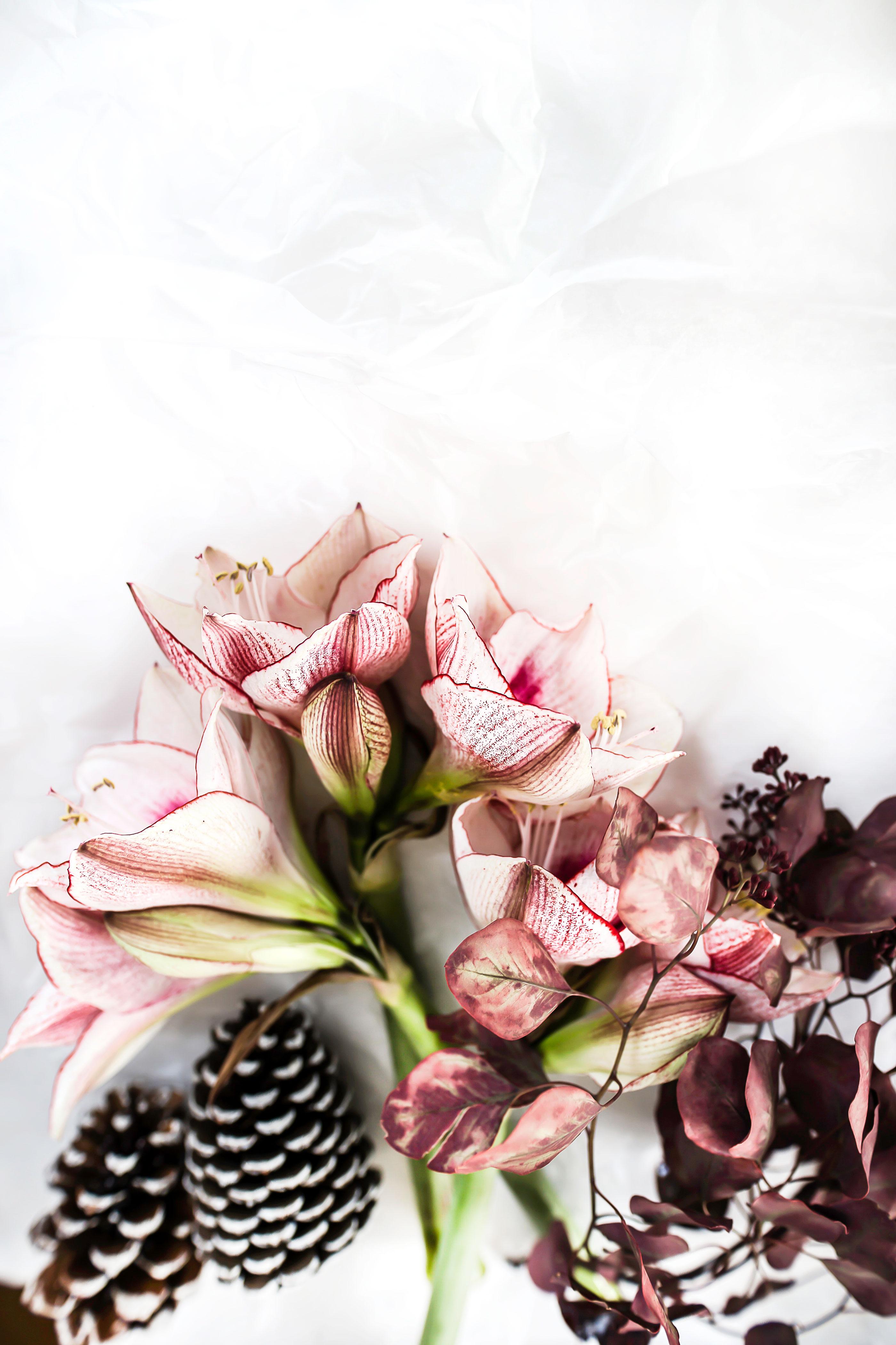 adventskranz_blumen_weihnachten_sos_diy_zukkerme_4