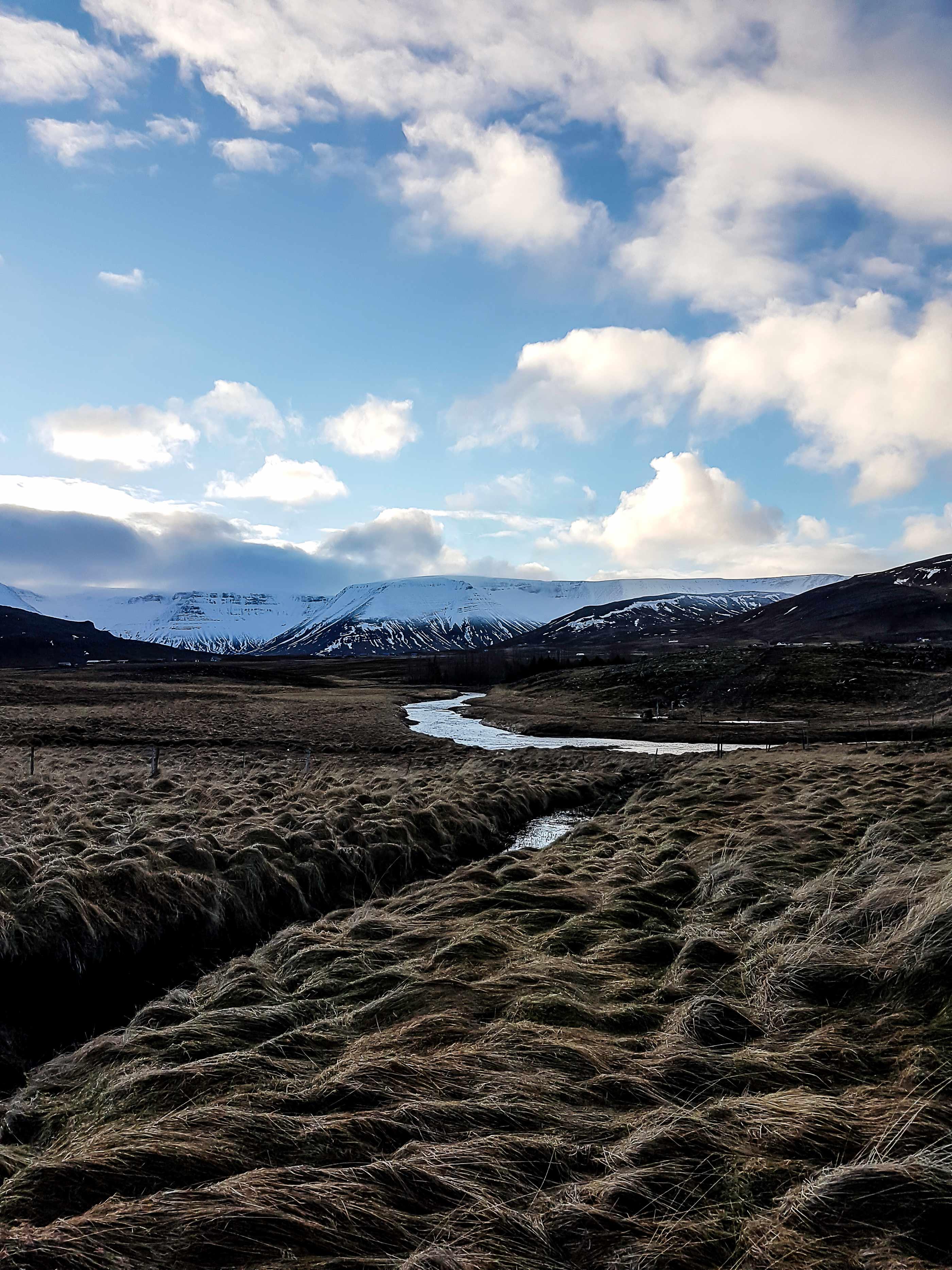 Island Reisetipps fuer Neulinge Reykjavik Trip