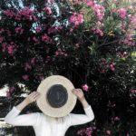 Kroatien Reise von Biograd bis Zadar – Travel Diary