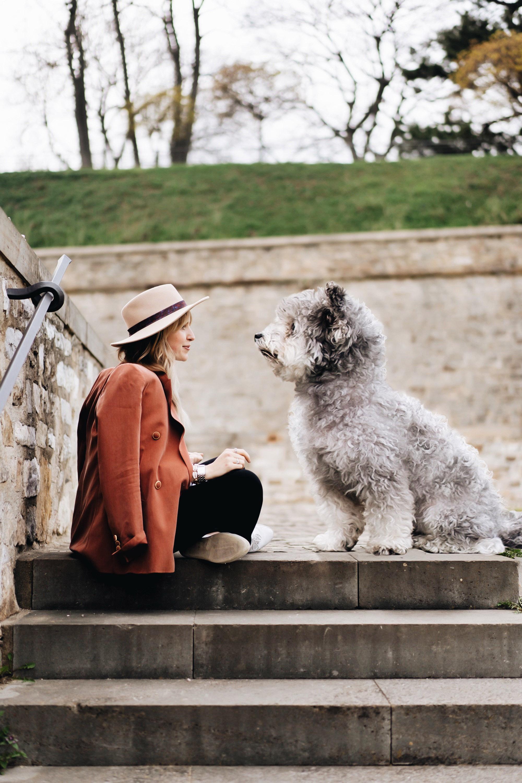 beneful mit hund leben und genießen