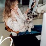 Hund im Büro: 5 Tipps mit denen es auf jeden Fall klappt.