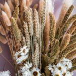 Trockenblumen und Trockensträuße – meine Top 5