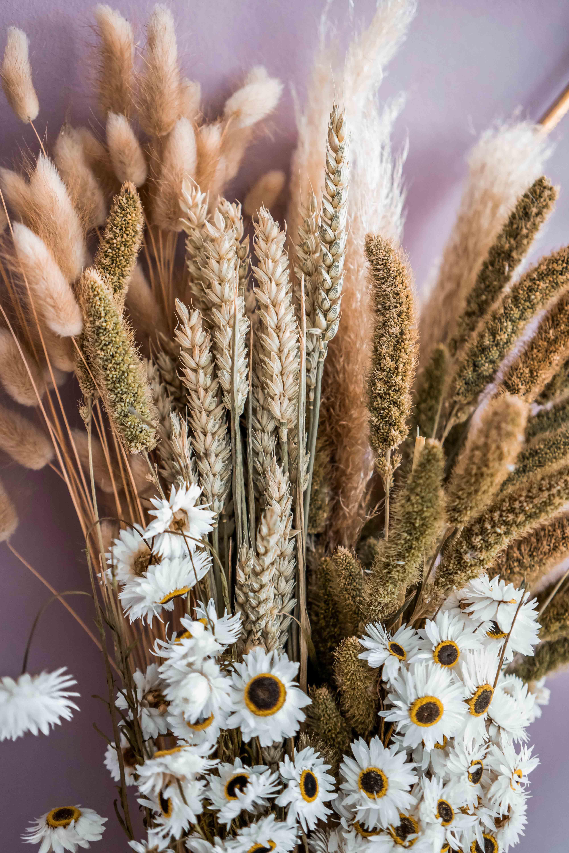 Bluemntrend: Trockenblumen und Sträusse