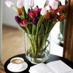 Tulpen online ordern und zu Hause richtig pflegen