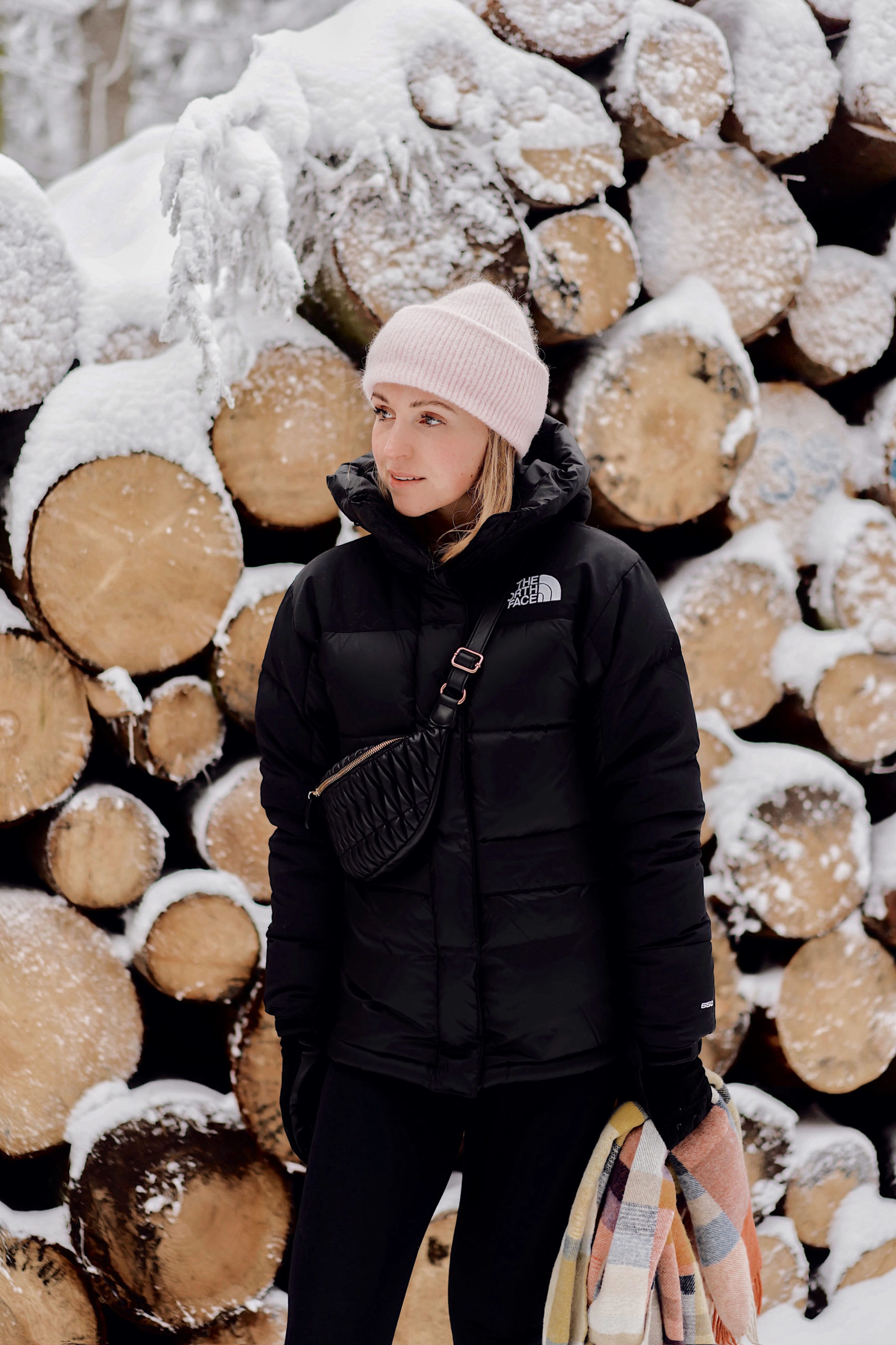 The North Face - die Winterjacke mit Style